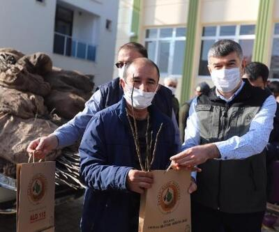 Gülnar'da 21 bin ceviz fidanı dağıtıldı
