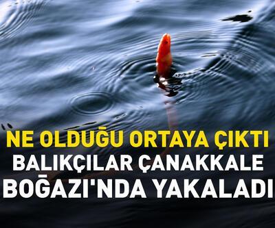 Balıkçılar ÇanakkaleBoğazı'nda yakaladı