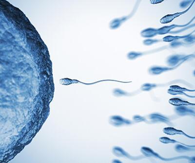 """2045 yılında sperm sayısı """"0"""" olacak"""