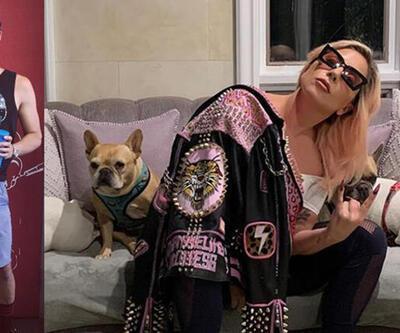 Lady Gaga'ya büyük şok: Silahlı saldırı sonrası köpekleri çalındı