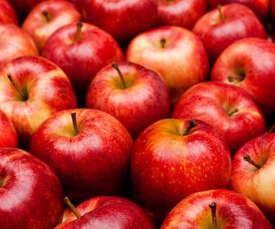 Elma Besin Değerleri Nedir? Elma Kaç Kalori İçerir, İçerisinde Hangi Vitaminler Vardır?