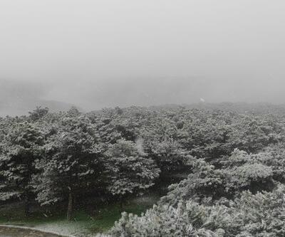 Kar yağışı ile birlikte beyaza büründü