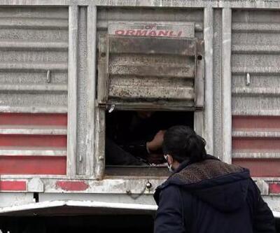 Van'da TIR'ın dorsesinde 218 kaçak göçmen yakalandı