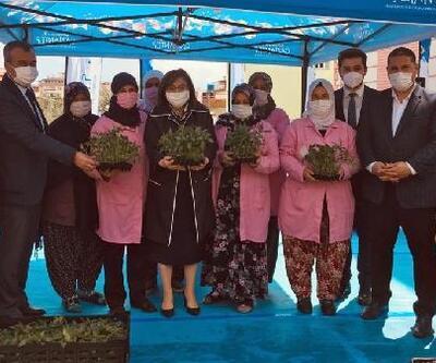 Nurdağı'nda çiftçilere biber fidesi desteği