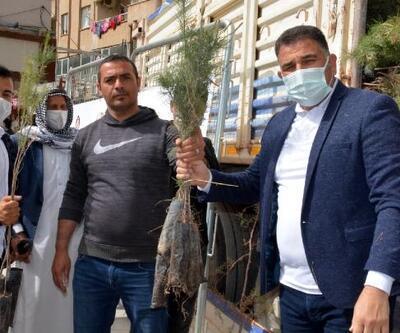 Kızıltepe'de vatandaşlara 12 bin fidan dağıtıldı