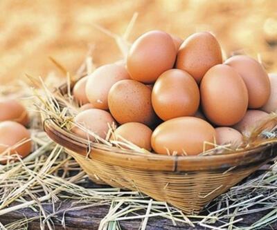 Bu uyarı şaşırttı! Yumurtaları kartonundan çıkarıp koyuyorsanız dikkat