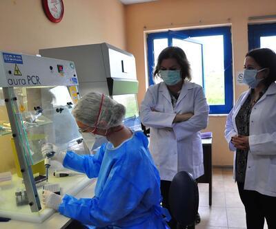 Araştırma sonuçları belli oldu! Sinovac aşısı ne kadar etkili?