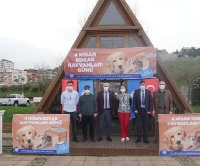 Trabzon'da sokak hayvanlarına özel ilgi