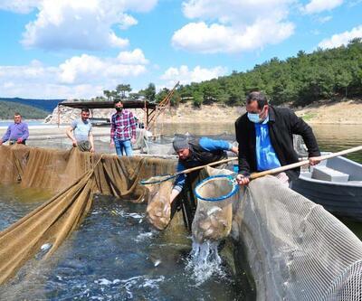Denizi olmayan kentten dünyaya balık ihracı