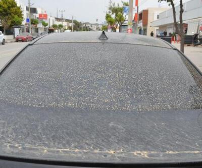 Bodrum'da gökten çamur yağdı