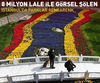 İstanbul'da 8 milyon lale ile görsel şölen