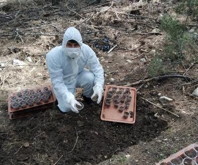 Dumansız yangına biyolojik müdahale