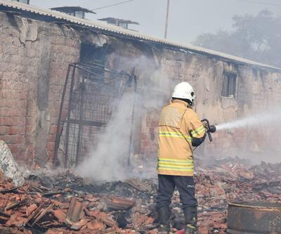 İzmir'de, hayvan çiftliğinde korkutan yangın