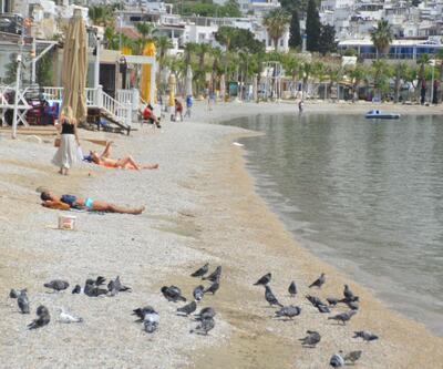 Bodrum plajları turistlere kaldı