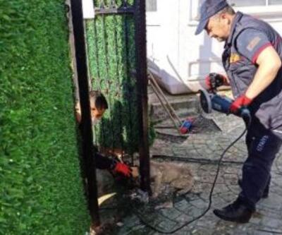 Başı demir kapıya sıkışan köpeği itfaiye kurtardı