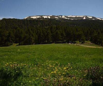 Murat Dağı'nda ilkbaharda güzel görüntüler ortaya çıktı