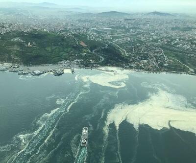 Deniz salyalarının toplandığı İzmit Körfezi, eski haline dönüyor