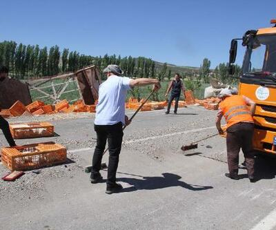 Devrilen TIR'daki yüzlerce tavuk öldü