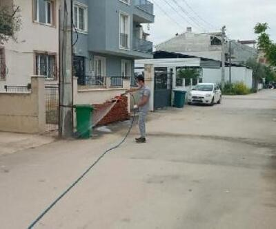 Osmangazi'de haşerelere karşı ilaçlama