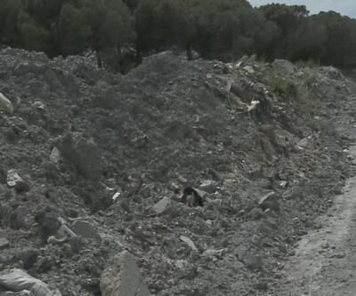 Alibey Barajı'nda plastik tehdidi
