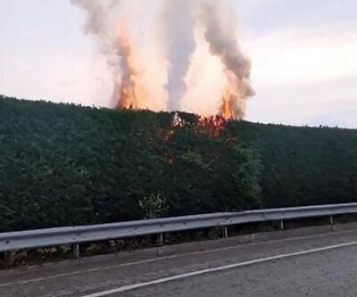 Kavşak içindeki ağaçlar yandı