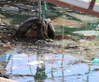 Sahildeki kirlilik deniz kaplumbağalarını tehdit ediyor