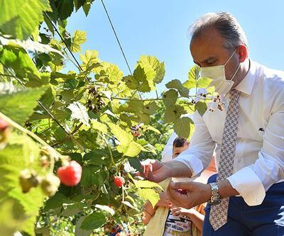 Bursa'da tarımın marka değeri artıyor
