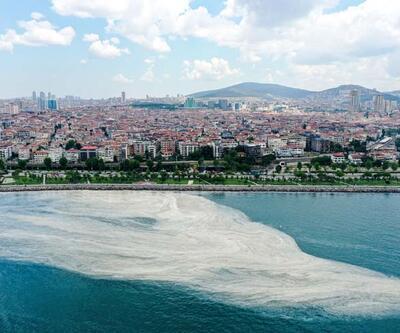Deniz salyası Anadolu yakasını kapladı