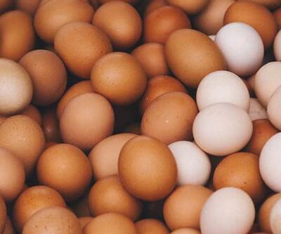 Organik yumurta nasıl ayırt edilir? İşte anlamanın yolu