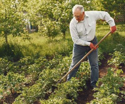 Bahçe işleriyle uğraşmanın sağlığa 5 faydası