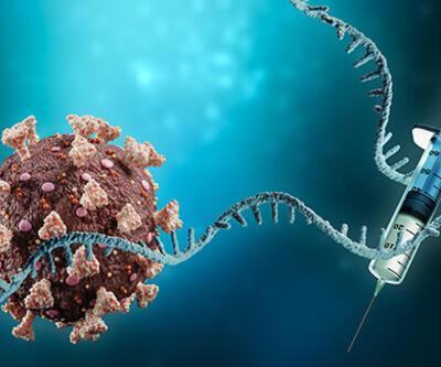 Koronavirüs Bilim Kurulu Üyesi Kayıpmaz, mRNA aşılarının DNA'yı değiştirdiği iddialarını değerlendirdi