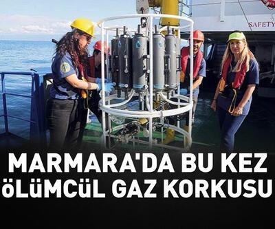 """Marmara'da bu kez """"ölümcül gaz"""" korkusu"""