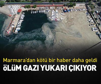 Marmara'dan kötü bir haber daha geldi