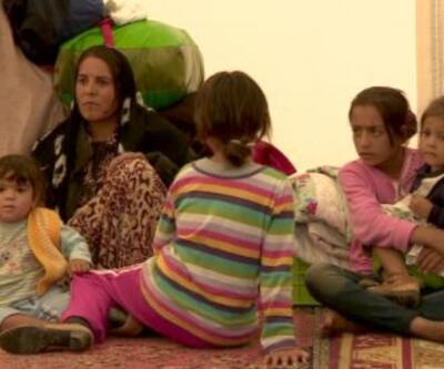 Göçmenler Türkiye'de ne yaşıyor?