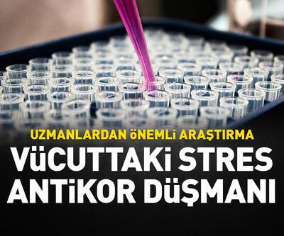 Uzmanlar araştırdı; stres antikor düşmanı