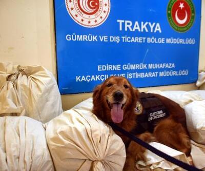 Sırbistan plakalı TIR'da 117 kilo esrar ele geçirildi