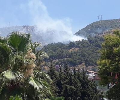Hatay'da ormanlık alanda çıkan yangın söndürüldü