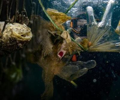 """""""2050 yılında denizlerde balıktan çok plastiğe rastlanabilir"""""""