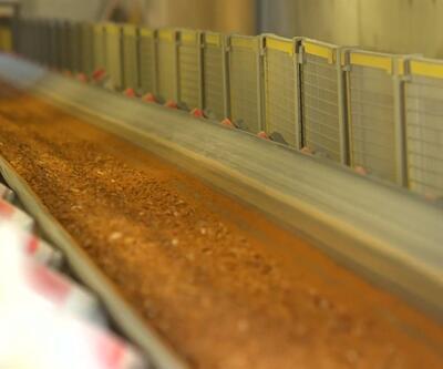 30 yılda 301 ton altın bulundu