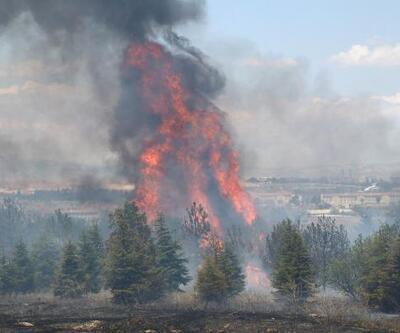 Ankara'da Atatürk Orman Çiftliği arazisinde yangın: 1 kişi gözaltına alındı