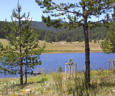 Ankara'daki Eğriova Yaylası yemyeşil doğası ve göletiyle misafirlerini cezbediyor