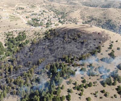 Kırıkkale'de orman yangını