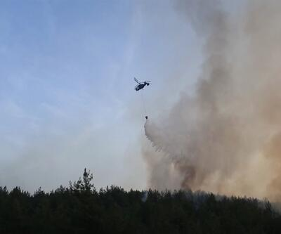 Orman yangınlarının sebepleri neler?