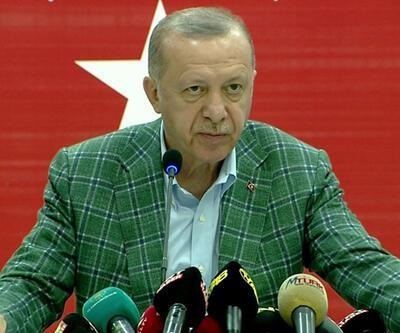 SON DAKİKA HABERİ: Cumhurbaşkanı Erdoğan: Milas'taki yangınla ilgili 1 kişi gözaltında