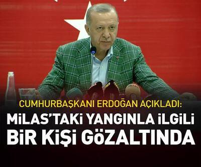 Cumhurbaşkanı Erdoğan: Milas'taki yangınla ilgili 1 kişi gözaltında