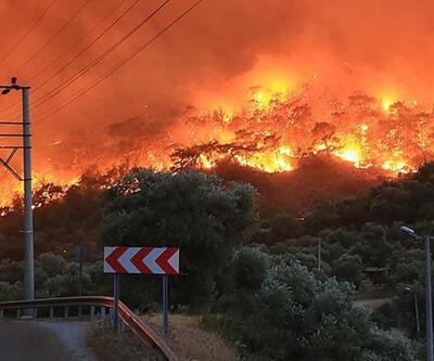 137 yangın kontrol altına alındı