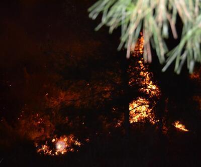 Manisa'da çıkan orman yangınında 10 dönüm alan zarar gördü