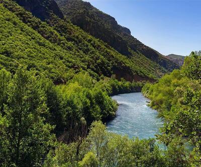 Tunceli'de ormanlara giriş yasağı