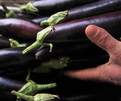 """Temmuzda fiyatı en fazla artan """"yurt içi turlar"""", en çok düşen """"patlıcan"""" oldu"""