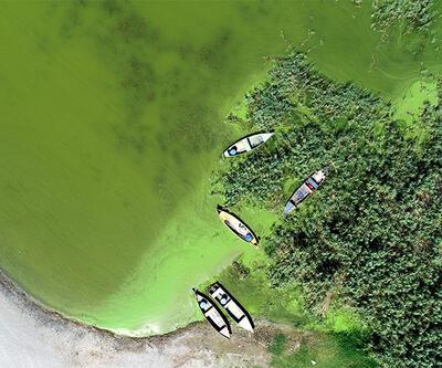 Koruma altındaki gölde alg patlaması